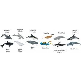 Tub 12 figurine - Balene si delfini