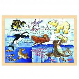Puzzle Viata polara