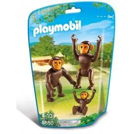 Familie De Cimpanzei imagine