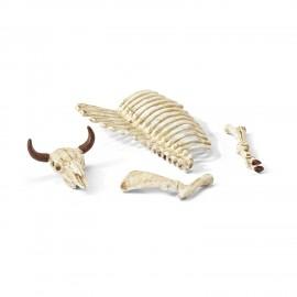 Set figurine schleich schelet 42249