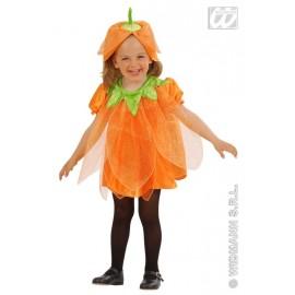 Costum Carnaval Copii - Dovlecel