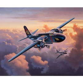 Avion p70 nighthawk revell rv3939