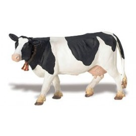 Vacuta Holstein
