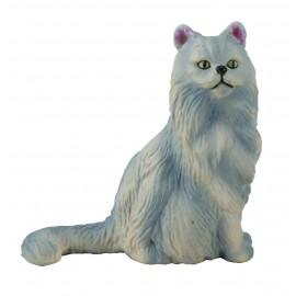 Pisica Persana-sezand