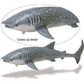 Rechinul balena