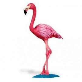 Pasarea Flamingo