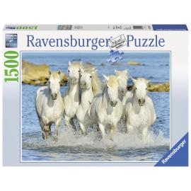 Puzzle cai in apa 1500 piese