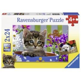 Puzzle pisicuta 2x24 piese
