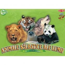 Tactic - Animale salbatice ale lumii